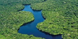 Fonte: https://www12.senado.leg.br/emdiscussao/edicoes/escassez-de-agua/desperdicio-e-poluicao-poluidos-rios-urbanos-nao-ajudam-no-abastecimento/comites-de-bacias-encontram-dificuldades-para-atuar-em-todo-o-brasil